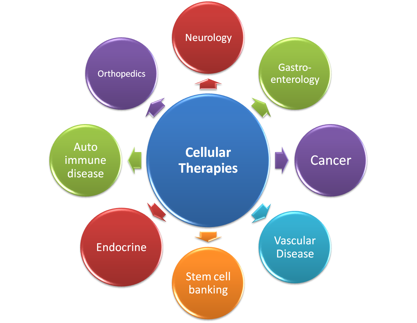 International Stemcell Services Ltd Cellular Therapy